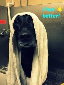 bath towel fancy