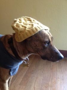 pancho hat