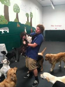 Max dog wrangling