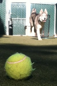 running with ball