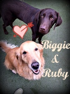 Biggie and Ruby