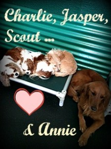 Charlie Jasper Scout and Annie