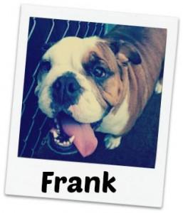 Frank fancy