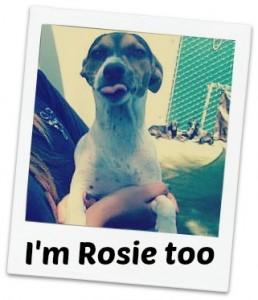 Rosie too fancy