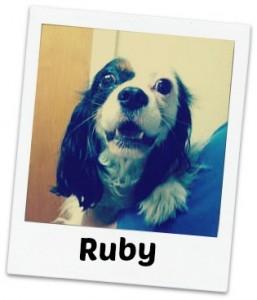 Ruby fancy