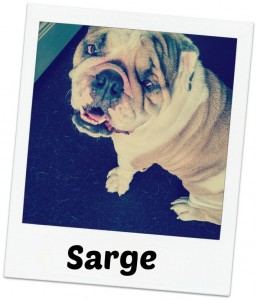 Sarge fancy