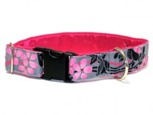 regular collar with snap closure