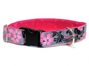 regular collar with snap closure